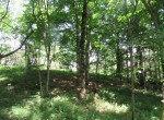 51 acres waterfront land for sale Camden NY