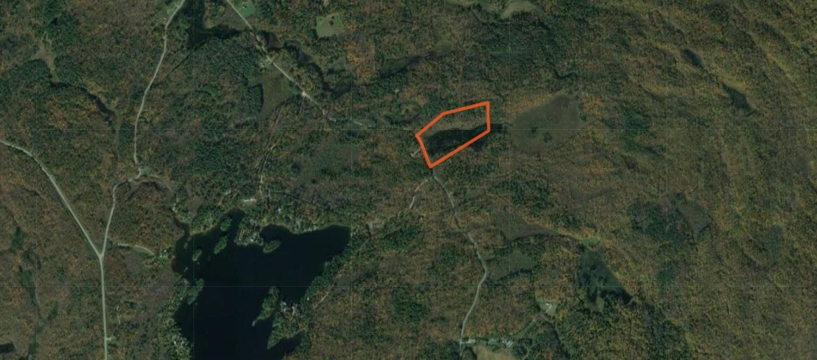 Map Pond on hunting land for sale ny