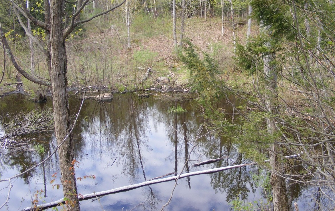7 acre land for sale with frontage on Estes Brook