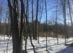 Land for sale with 800 ft on Little River!