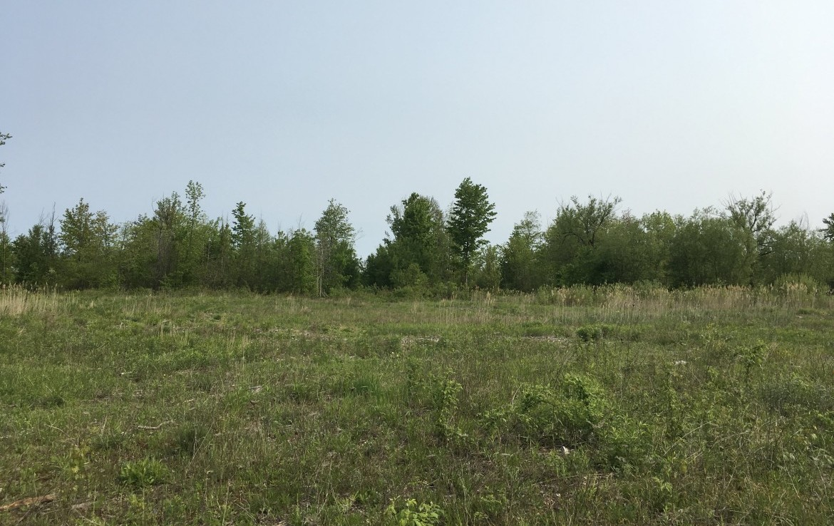 This 47.8 acre property would be a great lot to build a new home on.