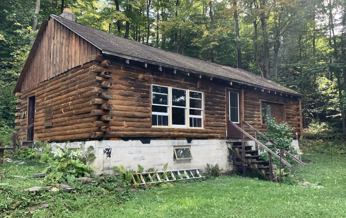 8 acres Log Cabin and Stream Nelson NY