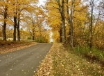 10 acre Adirondack Building Lot in St. Lawrence County, NY!