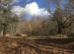 Waterfront Cabin for sale in Stockholm, NY!