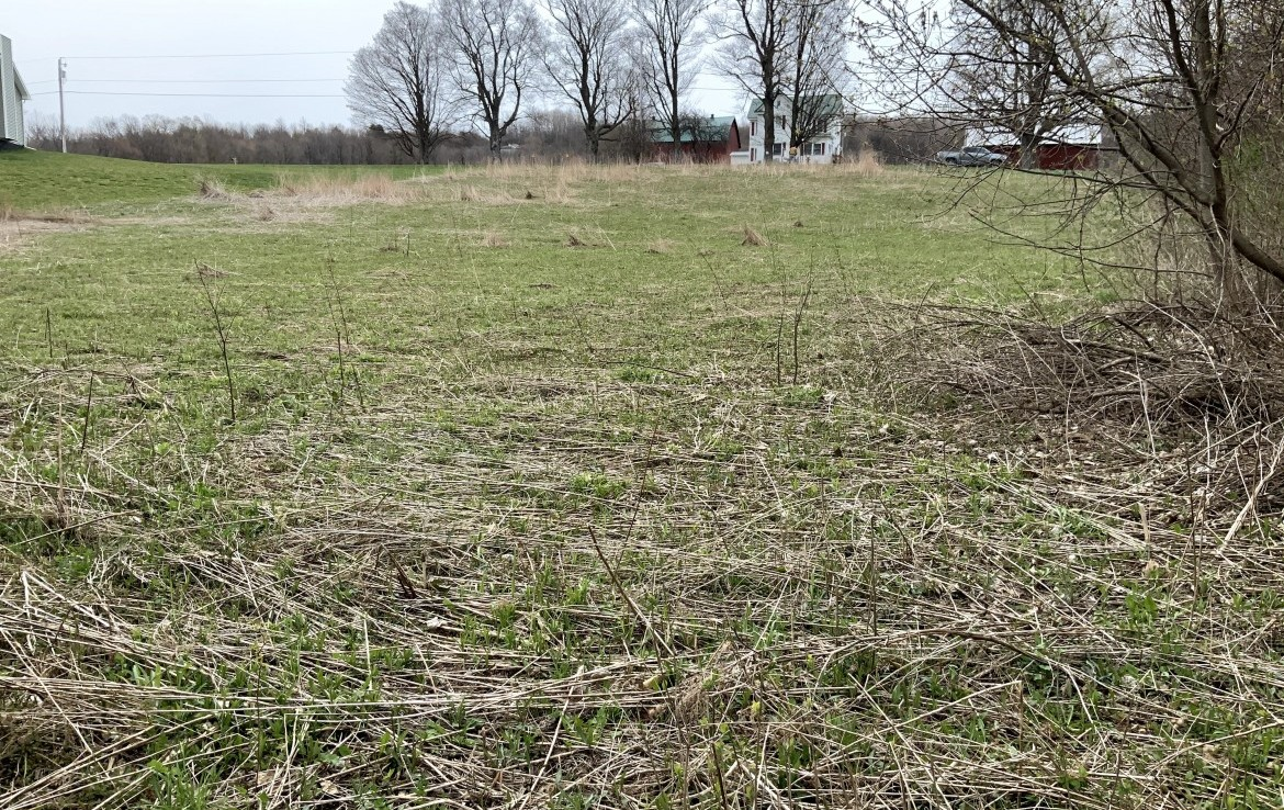1.16 acre Country Home Building Site for sale in Parish, NY!