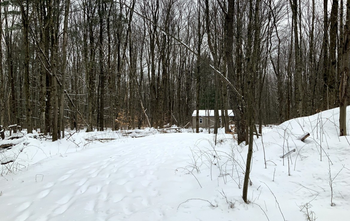 6 acres Hunting Land with Starter Camp near State Forest!