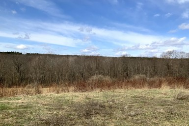 5.9 acres Bordering Beaver Meadow State Forest Smyrna NY