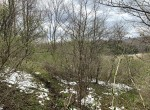 17.6 acres Hunting Land for sale in Bridgewater, NY!
