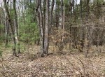 Land for sale near Oneida Lake...perfect base camp for hunting and fishing!