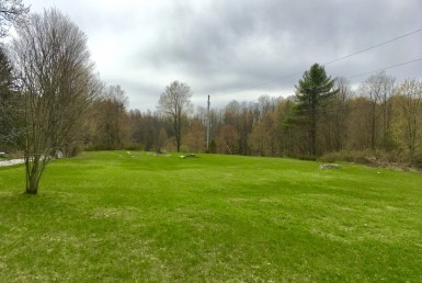 14 acre Country Building Lot Diana NY