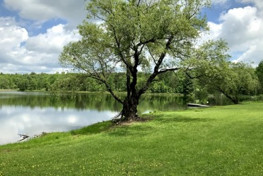 158 acres With 7 Acre pond Tioga NY