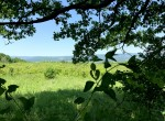60 acre Mountain Top Land For Sale, German Flatts, NY!