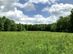Your Own Private Getaway Loaded with Woodlands, Fields, and Wildlife!