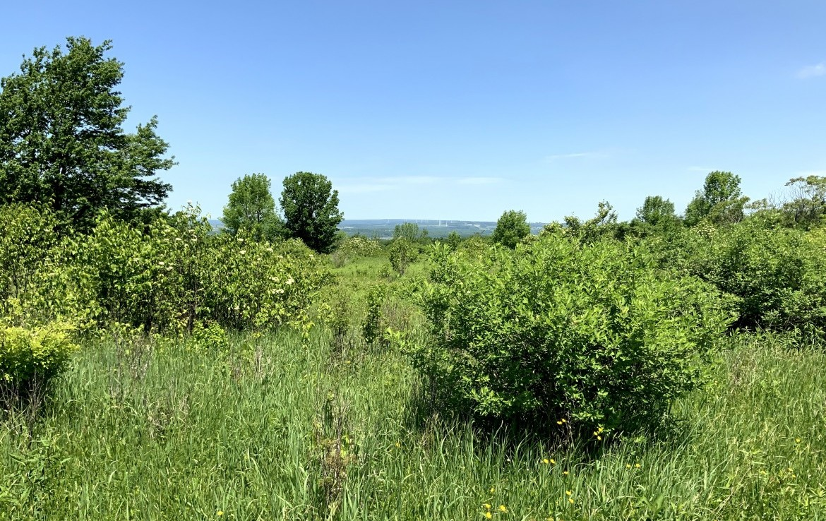 Build Your Country Home or Camp With Incredible Views of the Mohawk Valley!