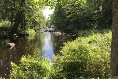 1.8 Acres Saint Regis River Waterfront Parishville NY