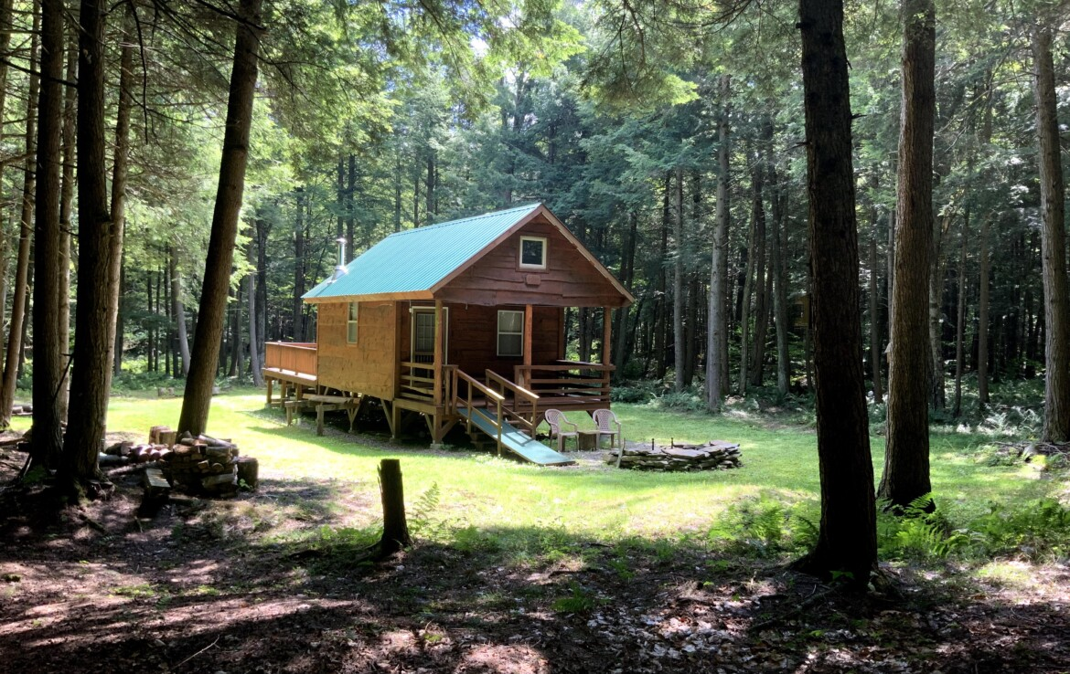3.9 acres with Woodland Camp, German, NY