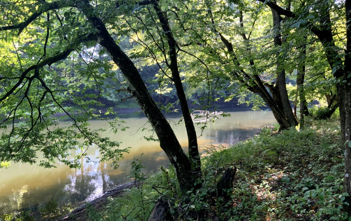 5 acre Wooded Land For Sale Along Fish Creek, Vienna, NY!