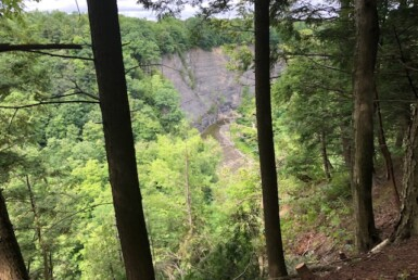 5 acres on Sandy Creek Gorge Lorraine NY