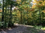 5 acre Land for Sale on Sandy Creek Gorge, Lorraine, NY!