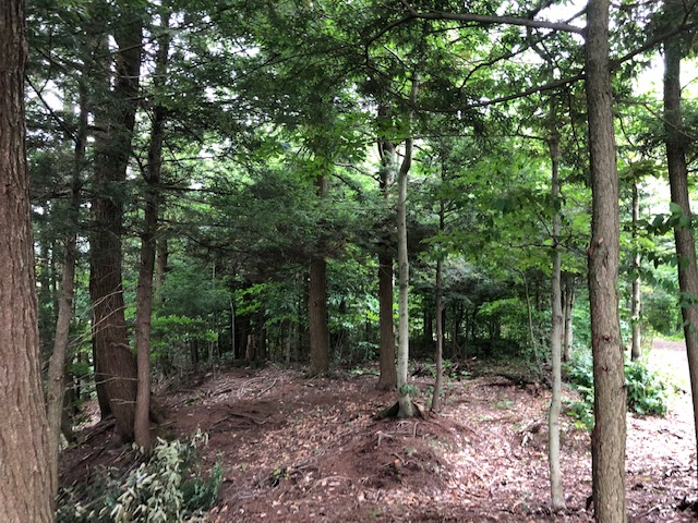 Breathtaking Views From Ready To Camp Clearing With Gravel Driveway!